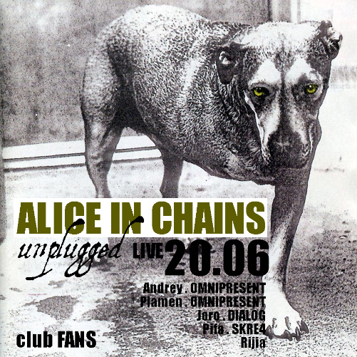Alice In Chains - Unplugged Live